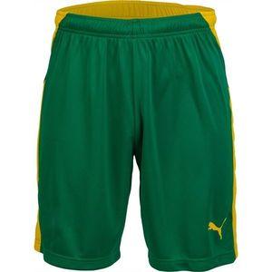Puma KC LIGA SHORTS sárga L - Férfi futball rövidnadrág kép