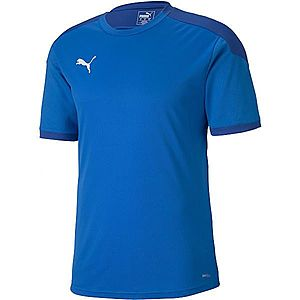 Puma TEAM FINAL 21 TRAINING JERSEY kék XL - Férfi póló kép